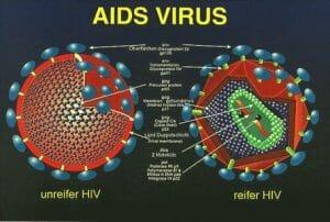 Manfaat Buah Merah Papua Untuk AIDS dan HIV