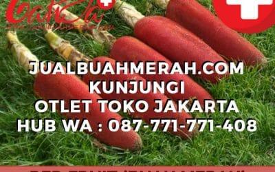 JUAL BUAH MERAH DI JAKARTA TIMUR