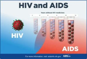 khasiat buah merah untuk hiv