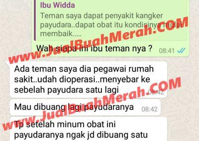 Jual Buah Merah Papua Bandung