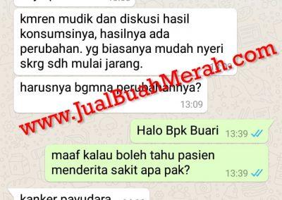 Jual Buah Merah Papua Jakarta