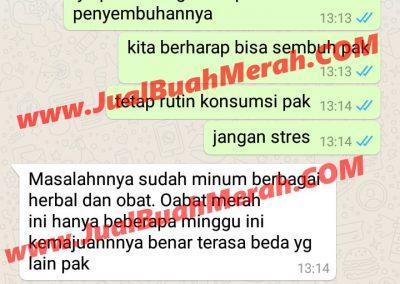 Jual Buah Merah Papua Jakarta Timur