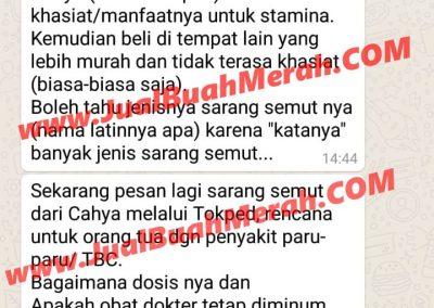 Testimony Efek Buah Merah Papua