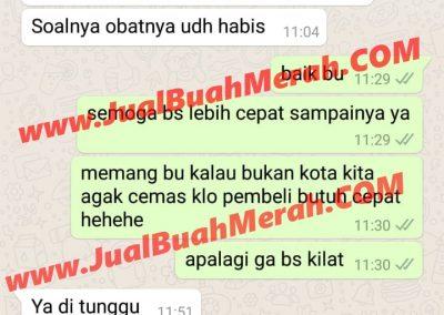 Testimony Jual Sarang Semut Papua