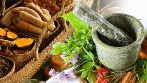 herbal buah merah obat asam urat