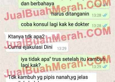 Jual Buah Merah Blanja.com
