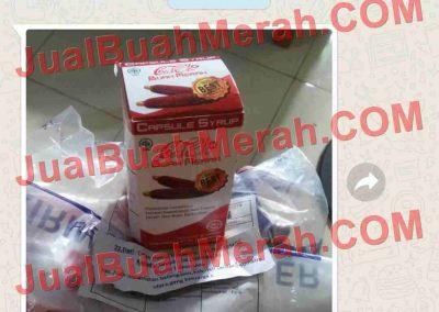 Jual Buah Merah Papua Bukalapak.com
