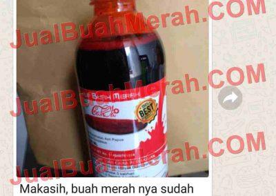 Jual Buah Merah Papua Tokopedia.com
