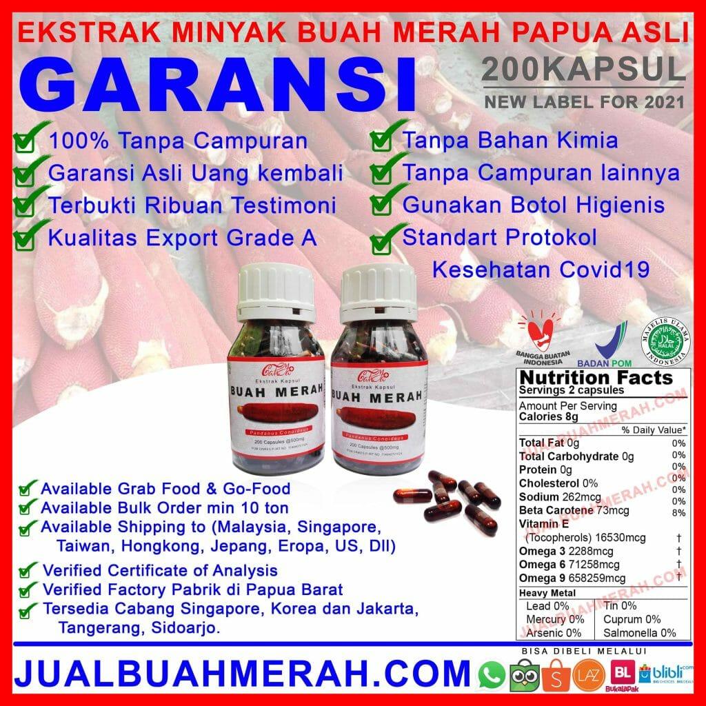 ekstrak minyak buah merah papua